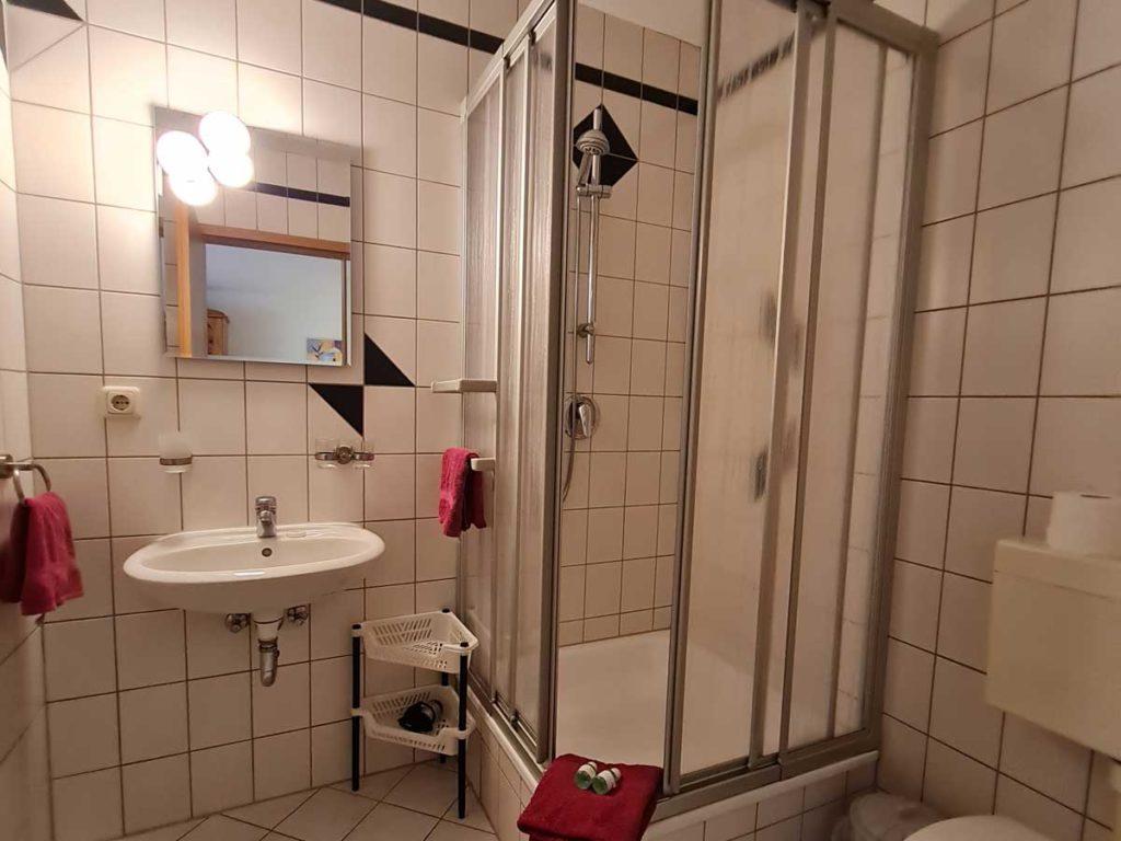 Hofblick-Badezimmer-Dusche-Moderne-FeWo-1Z-3-Personen-40qm-Ferienwohnung-Lueneburger-Heide-Niedersachsen-Heideort-Luenzen-Schneverdingen-Ferienhof-Reiterhof